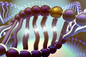 Как правильно выводить токсины из организма
