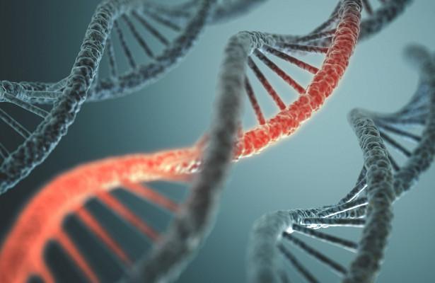 Ученые нашли новый способ распознавать ДНК