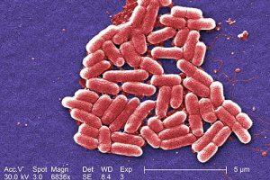 Распечатать У популярных лекарств против изжоги обнаружили новые опасные побочные эффекты