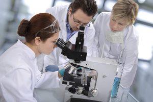 Ученые МГУ запатентовали новый метод стимуляции сперматогенеза