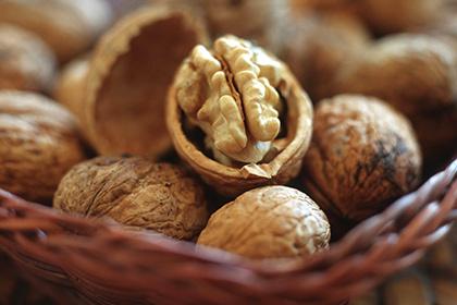 Доказаны противораковые свойства грецких орехов