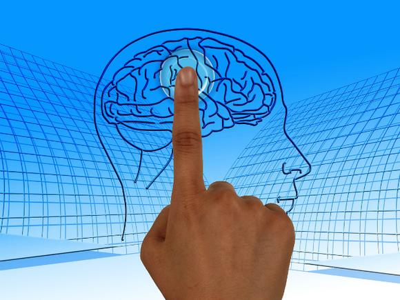 Медики: лишний вес ускоряет старение мозга на 10 лет