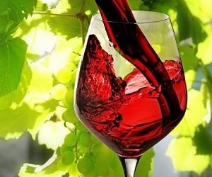 Исследователи: красное вино помогает бороться с диабетом