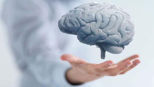 Здоровье мозга: что нужно знать