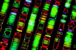 Ученые назвали самую опасную группу крови