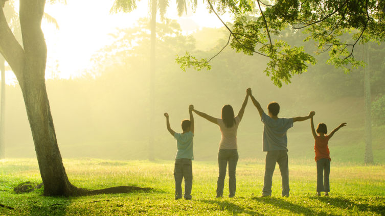 Генеалогическое дерево рода. Как сделать семейный подарок к Новому году?