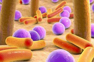 Бактерии, живущие на коже, становятся устойчивыми к антибиотикам