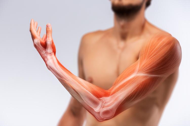Обнаружено совершенно новое мышечное заболевание