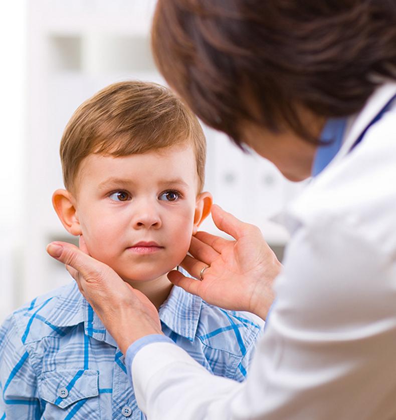 Критические периоды для щитовидной железы